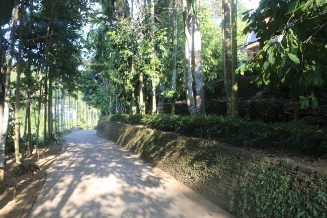 Đâu chỉ có phố cổ Hội An, Quảng Nam còn có vùng đất thần tiên phước lộc đẹp quên lối về