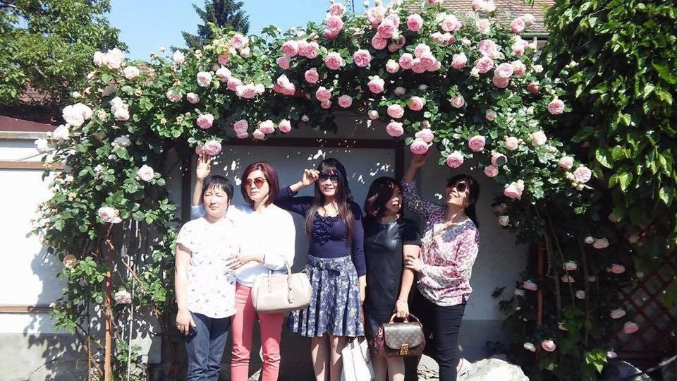 Khu vườn 250m2 rộn ràng hương sắc hoa hồng vạn người mơ ước của mẹ Việt ở Séc