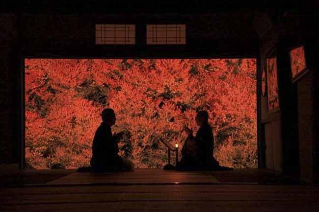 Những địa điểm đẹp như mơ nhưng chưa hề có tên trong những tour du lịch Nhật Bản