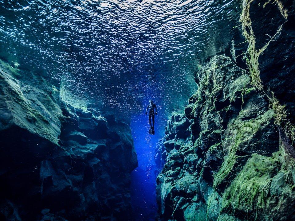 Lạc xuống thủy cung với loạt ảnh đại dương đẹp ngỡ ngàng