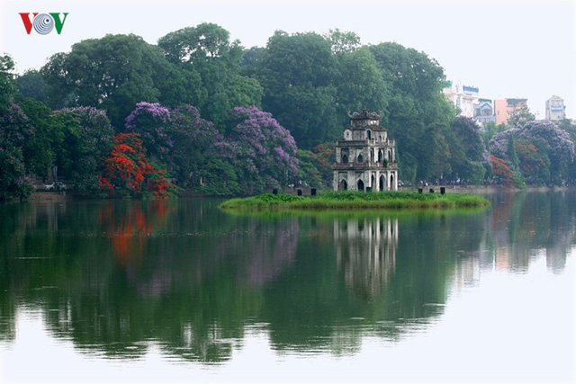 Hoa phượng thắp lửa bên Hồ Gươm