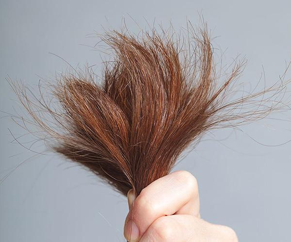 Mải chơi cũng tuyệt đối đừng quên những bí quyết bảo vệ tóc ngày hè oi bức này