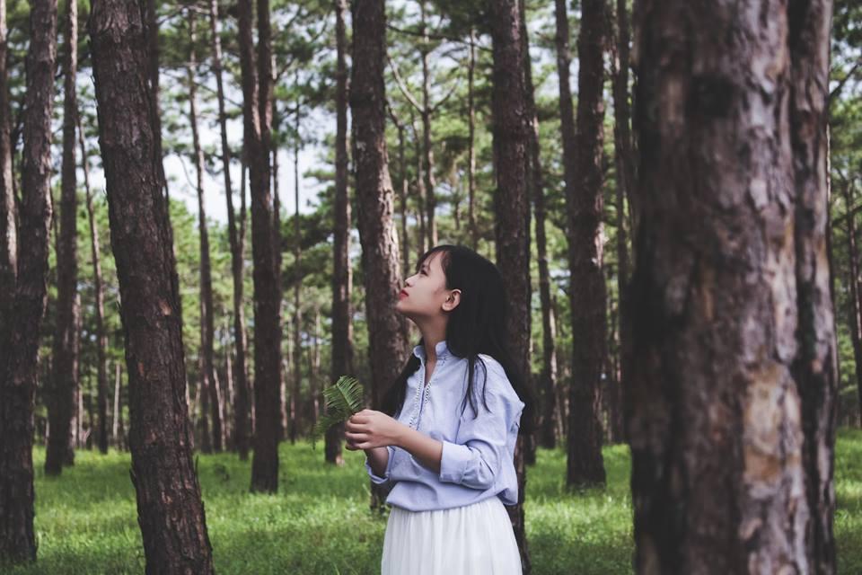 Cạnh Đà Lạt có một nàng thơ bị bỏ quên mang tên Di Linh