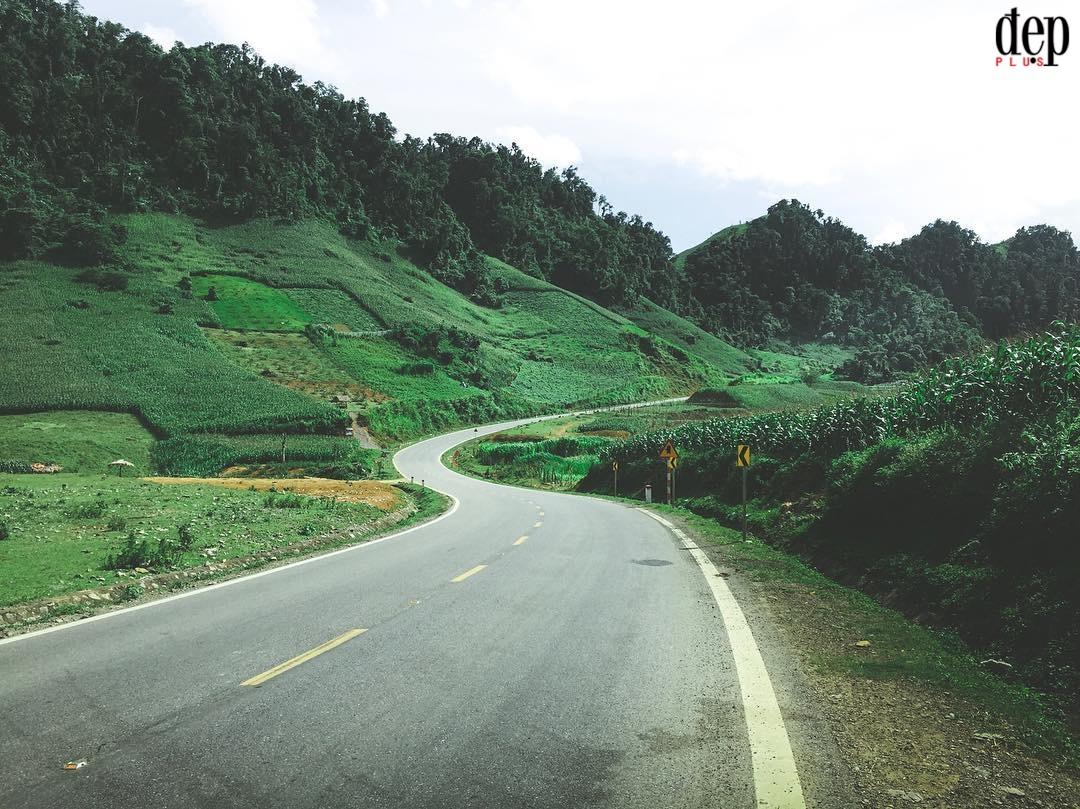 Mộc Châu - địa điểm du lịch được nhắc đến nhiều nhất miền Bắc trong dịp Tết dương lịch năm nay
