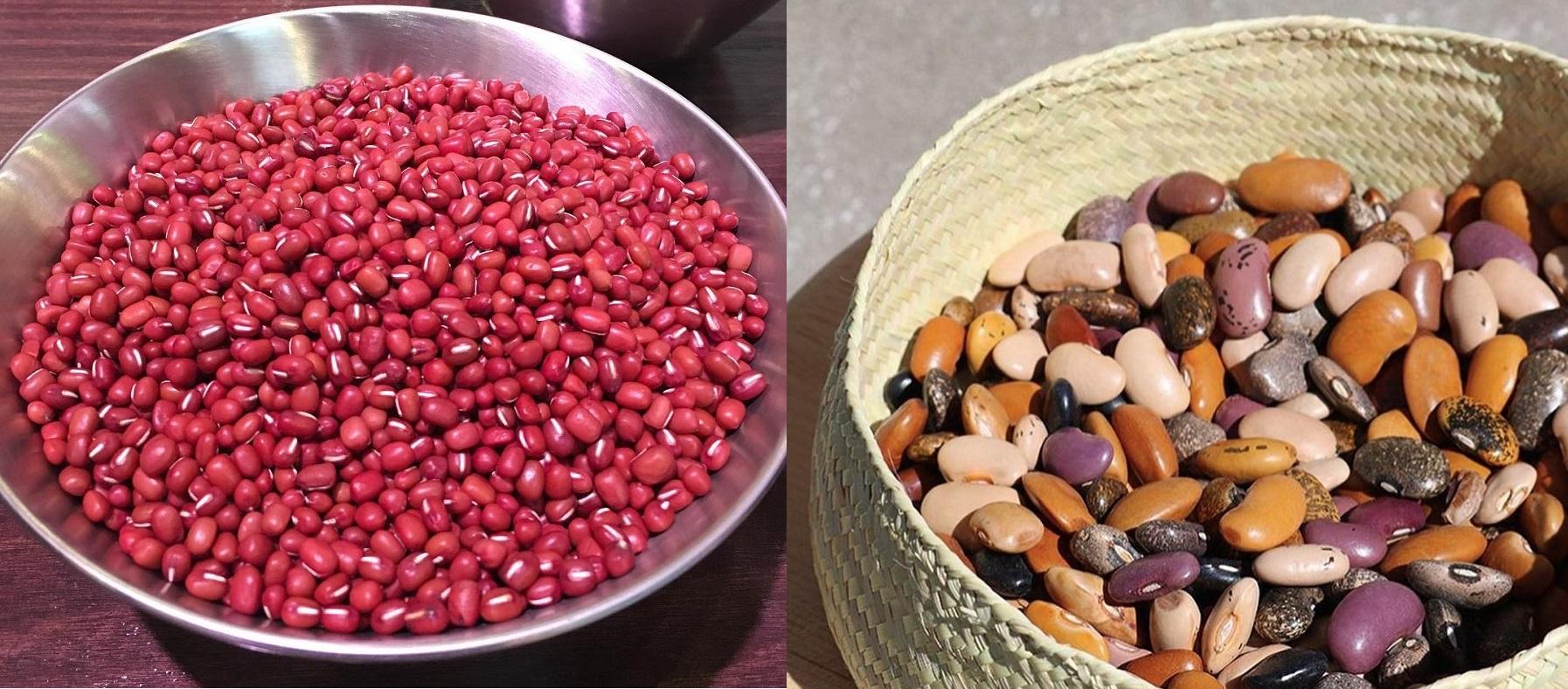 Tại sao phải ngâm các loại đậu, đỗ trước khi nấu và ngâm như thế nào cho đúng cách?