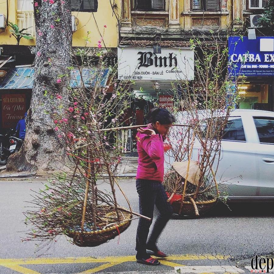Hoa đào mang Tết về trên đường phố Hà Nội