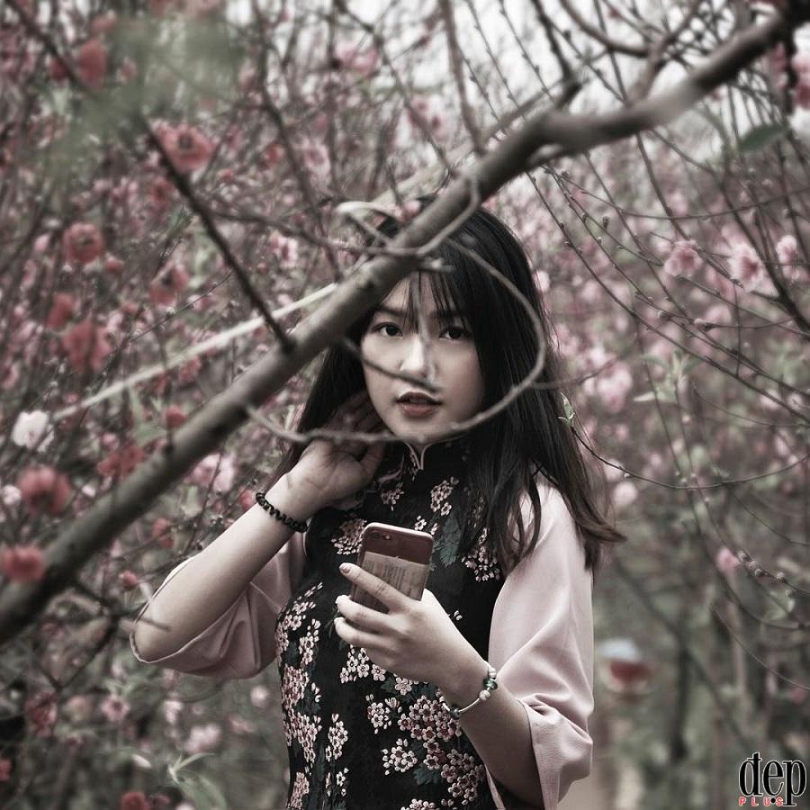 Nữ tú Hà thành đua nhau tạo dáng bên vườn đào đón Xuân