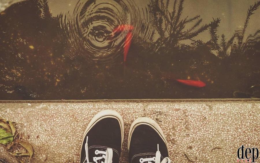Ngày ông Công ông Táo: Thả cá chép thế nào cho đúng?