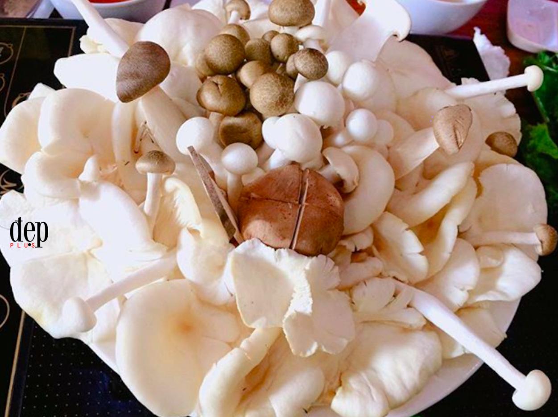 Mẹo chọn nấm vừa thơm ngon vừa an toàn tuyệt đối cho bữa ăn ngày Tết