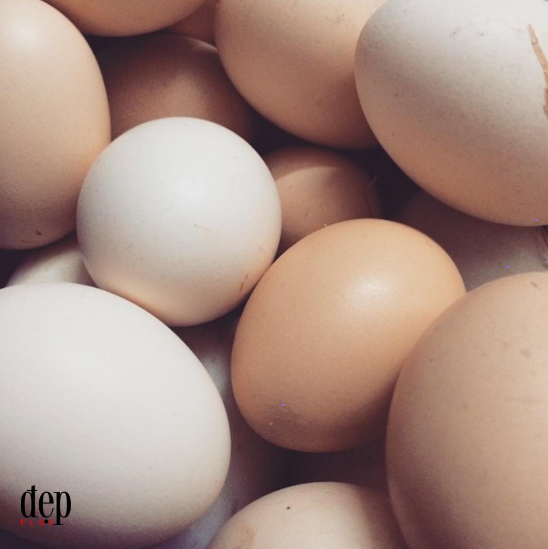Kinh nghiệm phân biệt trứng gà ta và trứng gà Trung Quốc