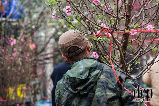 Lung linh sắc màu cùng chợ hoa Tết Hà Nội trong ngày cuối năm