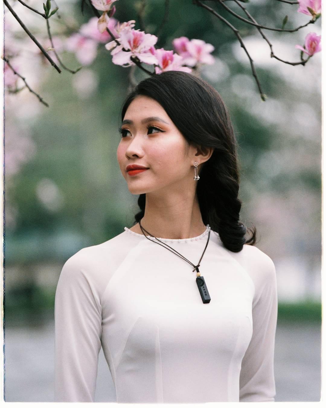 Hoa ban mang xuân Tây Bắc về với Thủ đô Hà Nội