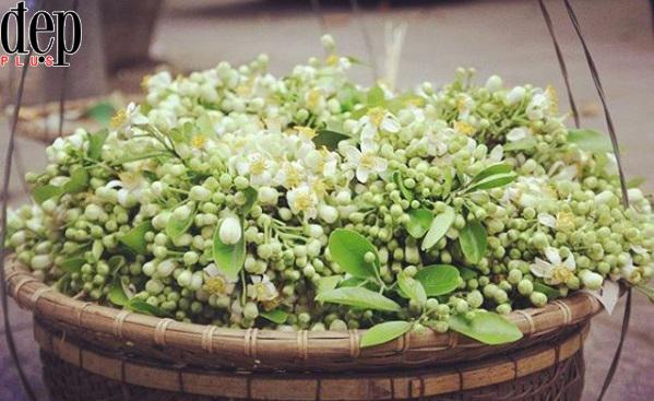 Những món ăn thơm ngon kết hợp với hoa bưởi