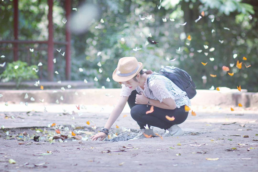 Lưu ngay kinh nghiệm săn bướm Vườn Quốc gia Cúc Phương