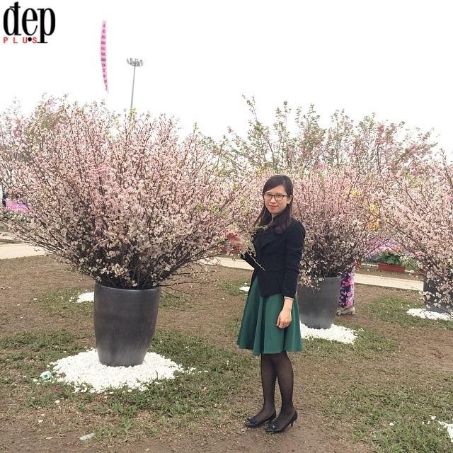 Quảng Ninh: Có gì ở Lễ hội hoa anh đào và mai vàng Yên Tử?