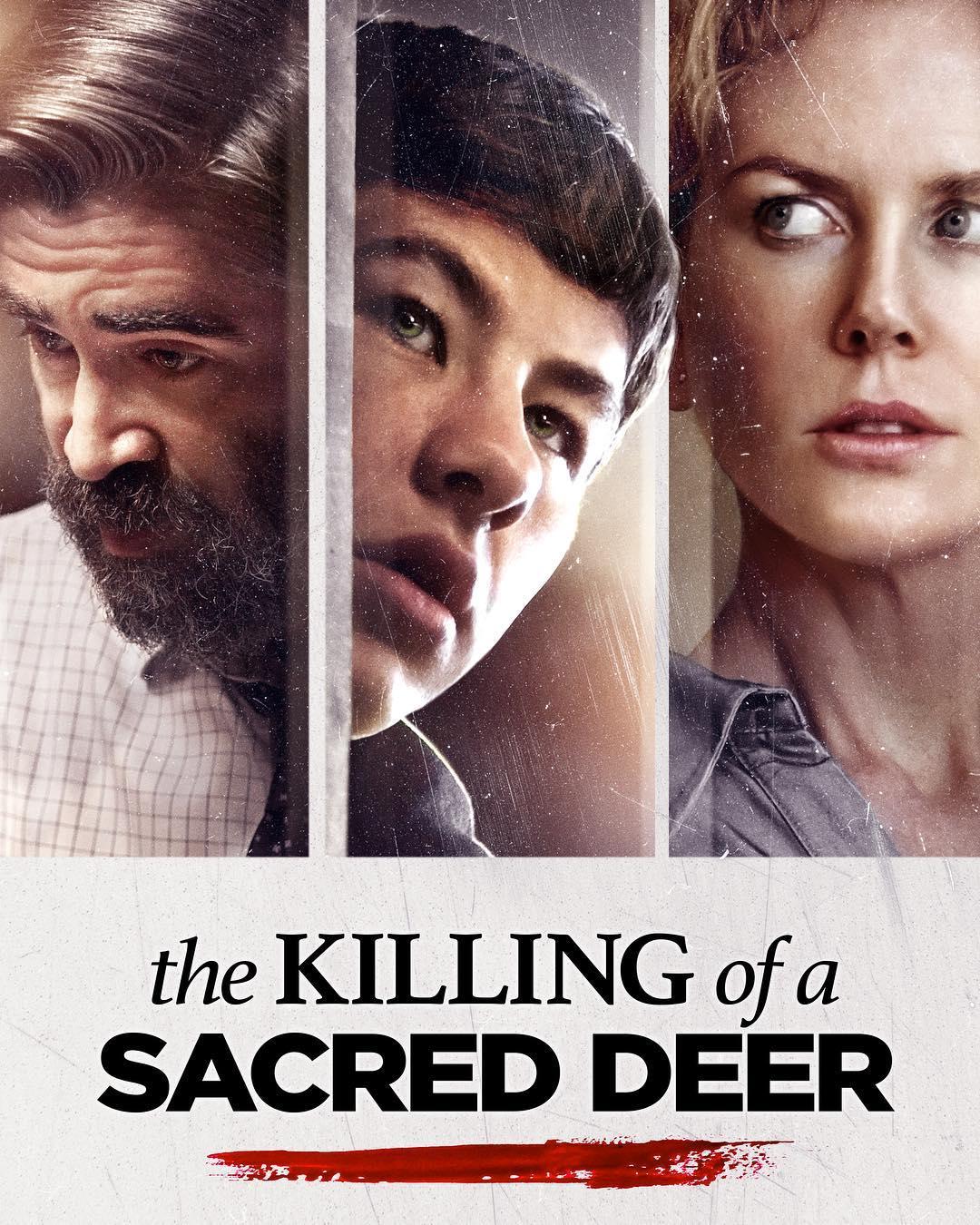 The Killing Of A Sacred Deer - Con sóng bạc đầu của làn sóng điện ảnh kỳ dị Hy Lạp
