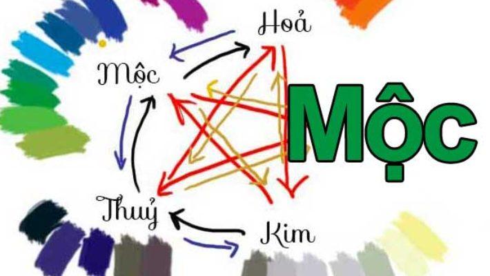 Người mệnh Mộc hợp màu gì và kị màu gì?