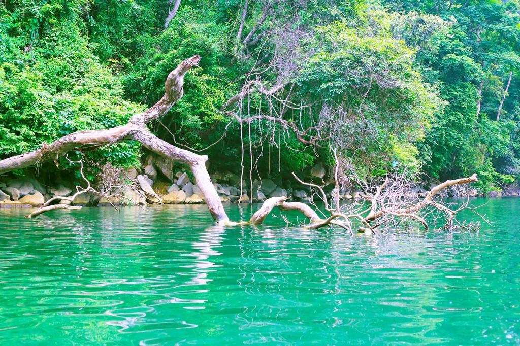 Ngỡ ngàng trước vẻ đẹp nước non hùng vĩ  hồ Ba Bể