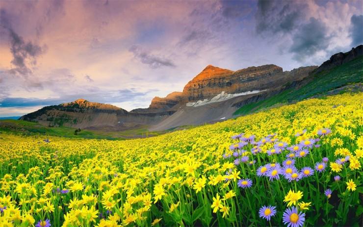 Việt Nam có tới 2 địa danh lọt top 10 kỳ quan thiên nhiên đáng kinh ngạc nhất châu Á