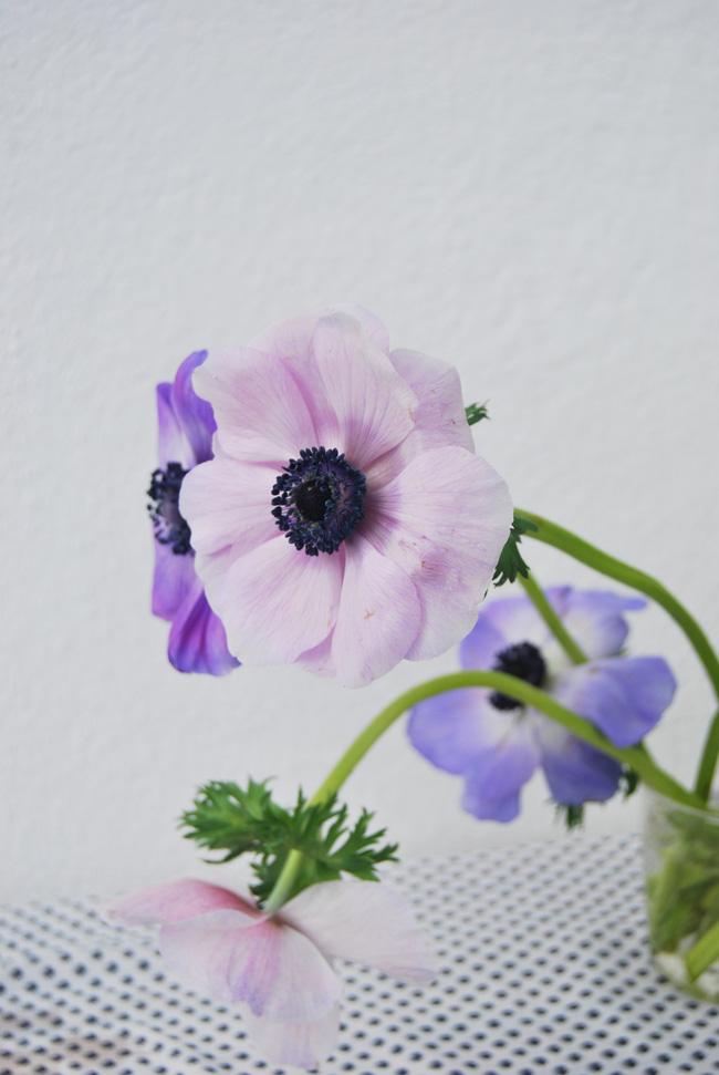 Mang vẻ đẹp tràn đầy sức sống của các loài hoa vào ngôi nhà với cách cắm hoa đơn giản
