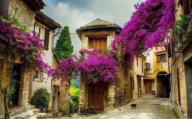 15 ngôi làng đẹp như bước ra từ cổ tích với kiến trúc độc đáo cùng phong cảnh hữu tình - 1