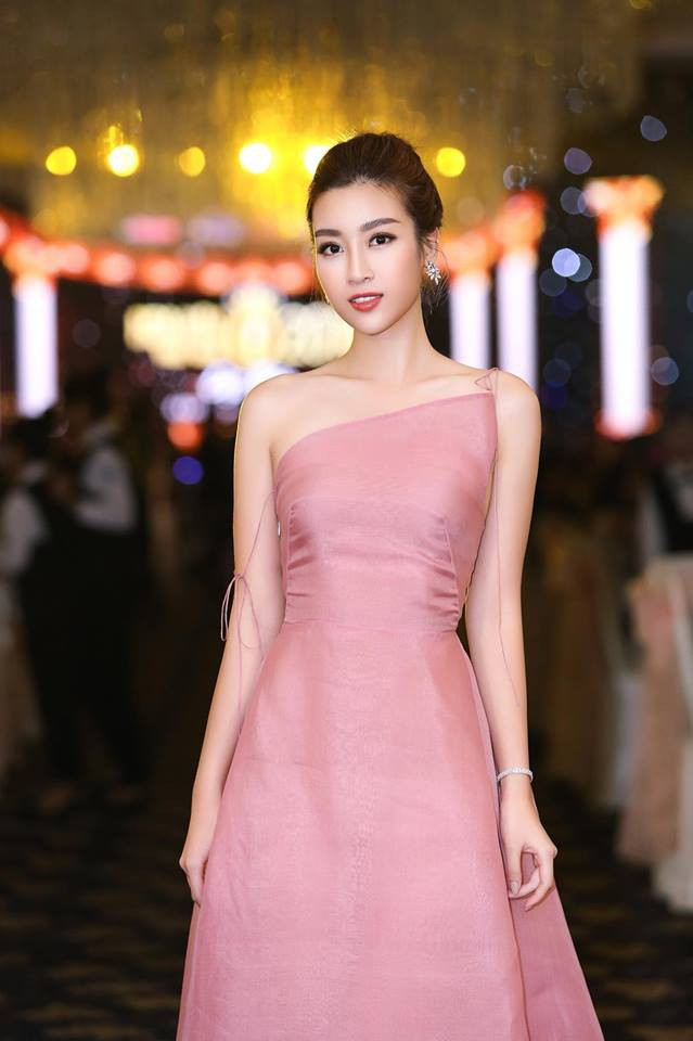 Đỗ Mỹ Linh: Từ cô gái bị chê bầm dập với nhan sắc 'thiếu mì chính' lúc đăng quang đến danh xưng 'Hoa hậu bảo vật quốc gia' - 1