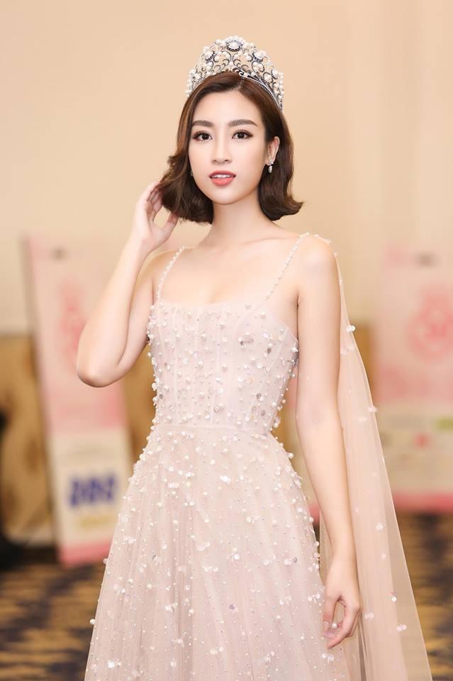 Đỗ Mỹ Linh: Từ cô gái bị chê bầm dập với nhan sắc 'thiếu mì chính' lúc đăng quang đến danh xưng 'Hoa hậu bảo vật quốc gia' - 8