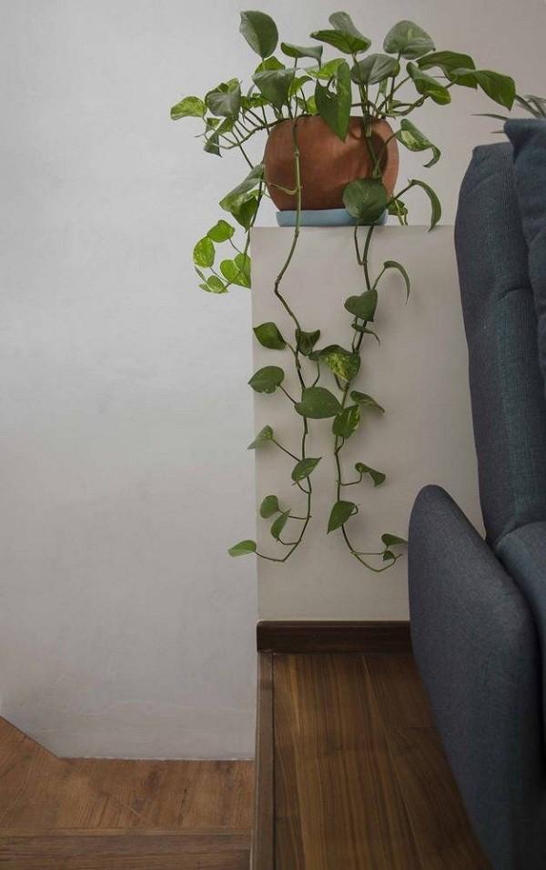 Không gian sống đẹp 'lộng lẫy' cải tạo từ ba ngôi nhà cũ - 15