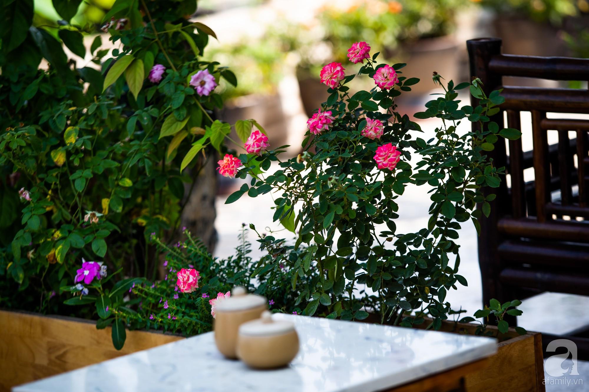 Khu vườn trên sân thượng rộng 200m² đẹp ngỡ ngàng với trăm loài hoa đua nhau khoe sắc ở Hà Nội - 9