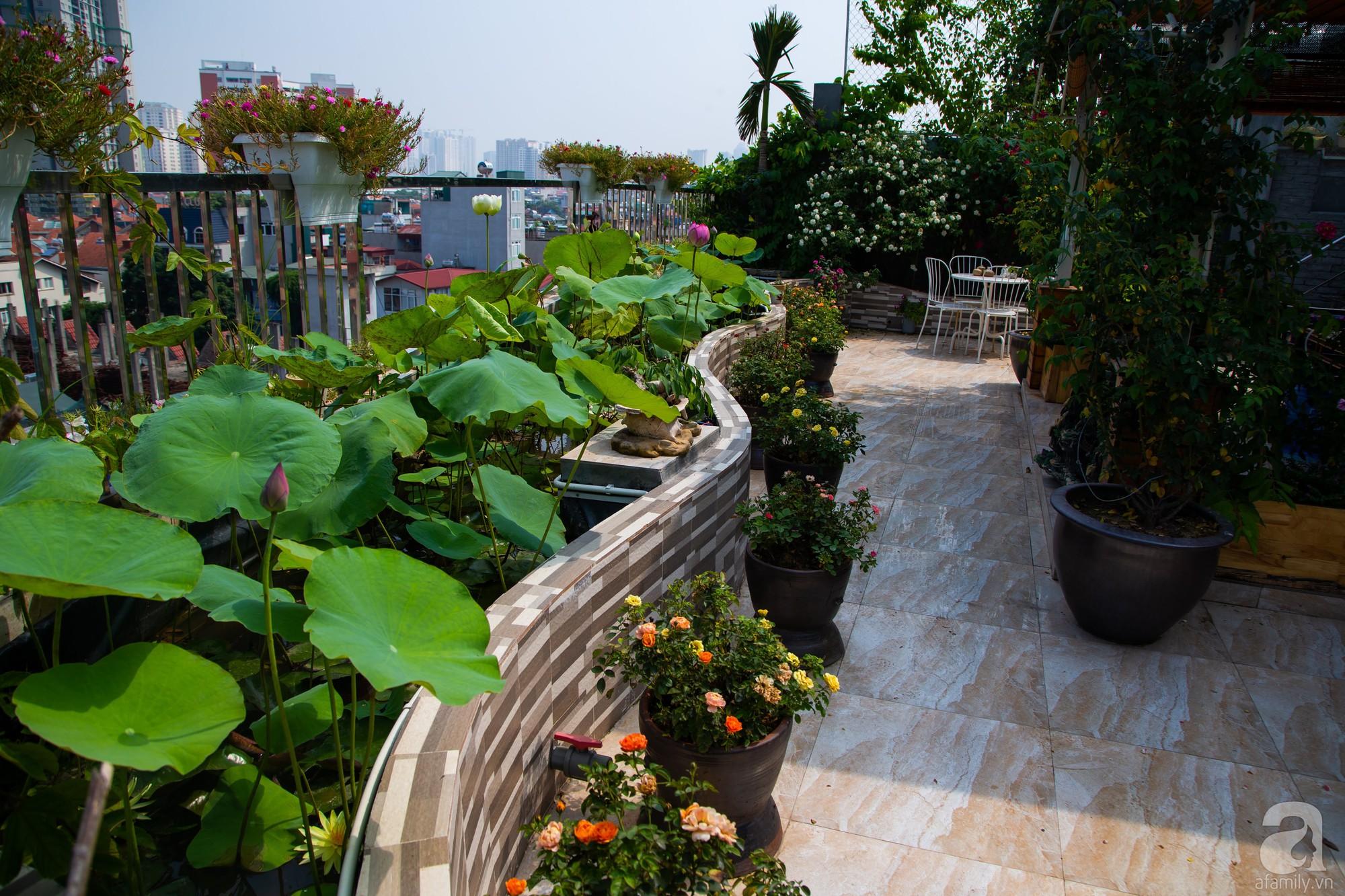 Khu vườn trên sân thượng rộng 200m² đẹp ngỡ ngàng với trăm loài hoa đua nhau khoe sắc ở Hà Nội - 12
