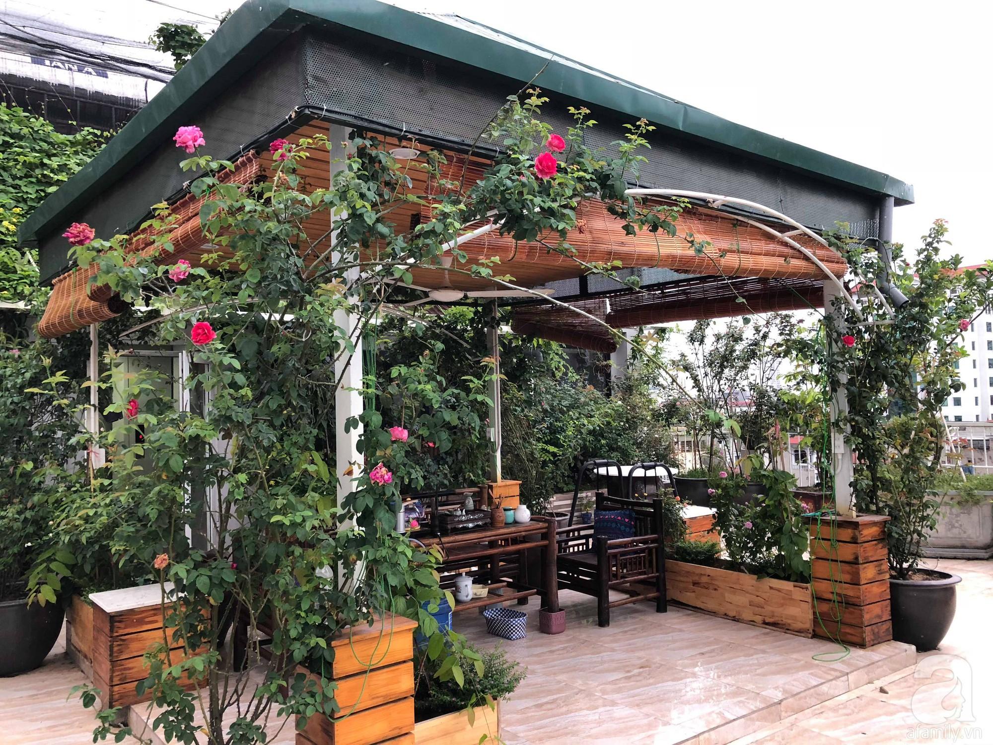 Khu vườn trên sân thượng rộng 200m² đẹp ngỡ ngàng với trăm loài hoa đua nhau khoe sắc ở Hà Nội - 3