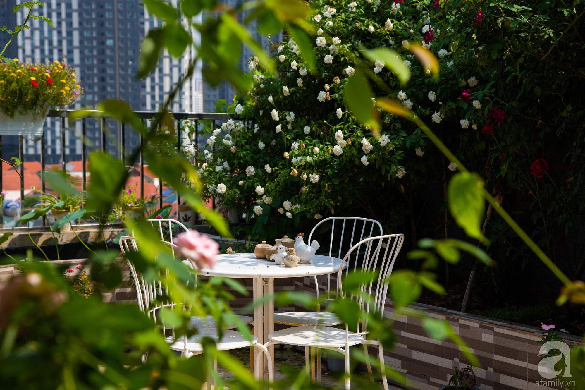 Khu vườn trên sân thượng rộng 200m² đẹp ngỡ ngàng với trăm loài hoa đua nhau khoe sắc ở Hà Nội - 4
