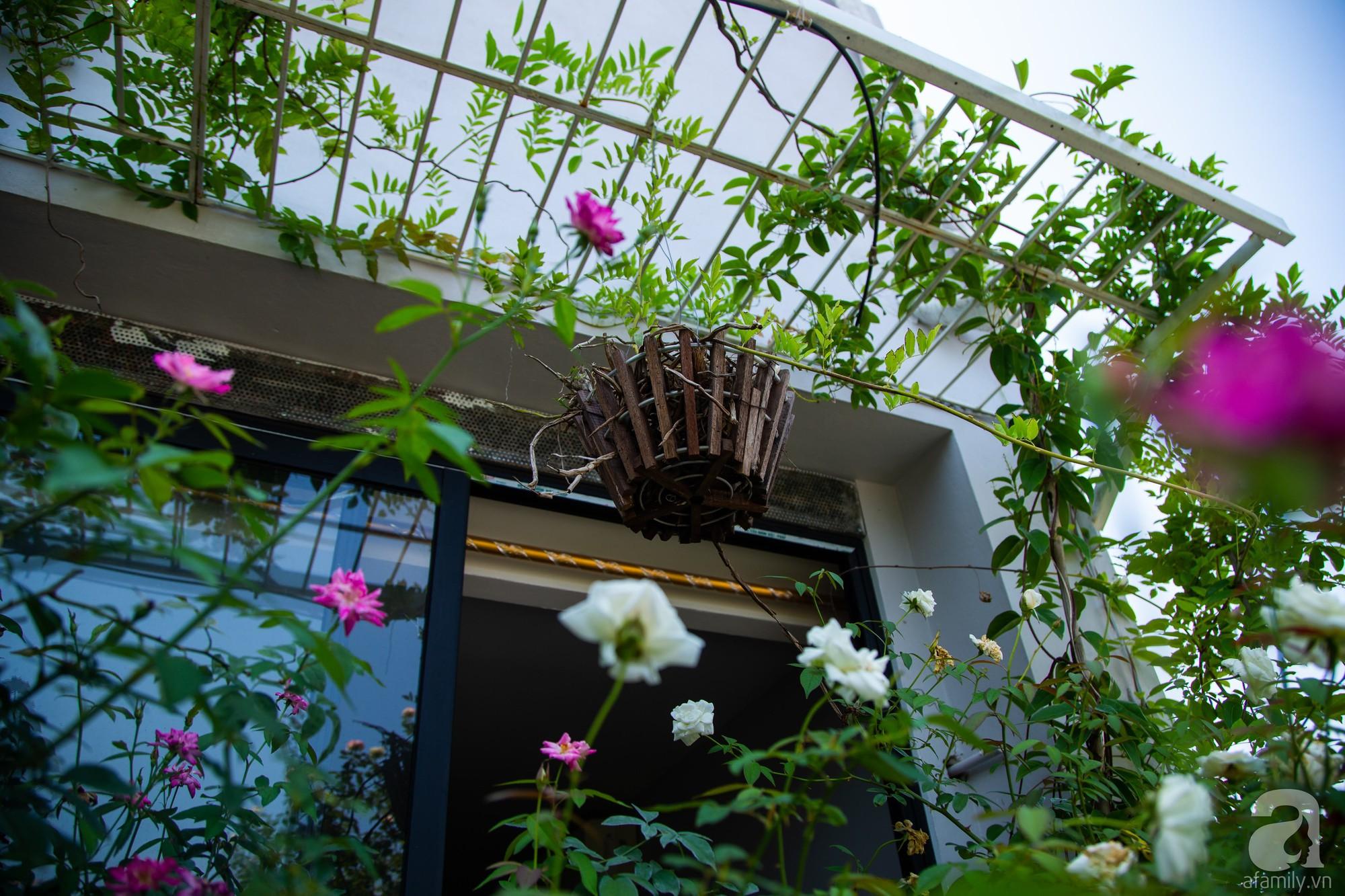 Khu vườn trên sân thượng rộng 200m² đẹp ngỡ ngàng với trăm loài hoa đua nhau khoe sắc ở Hà Nội - 6