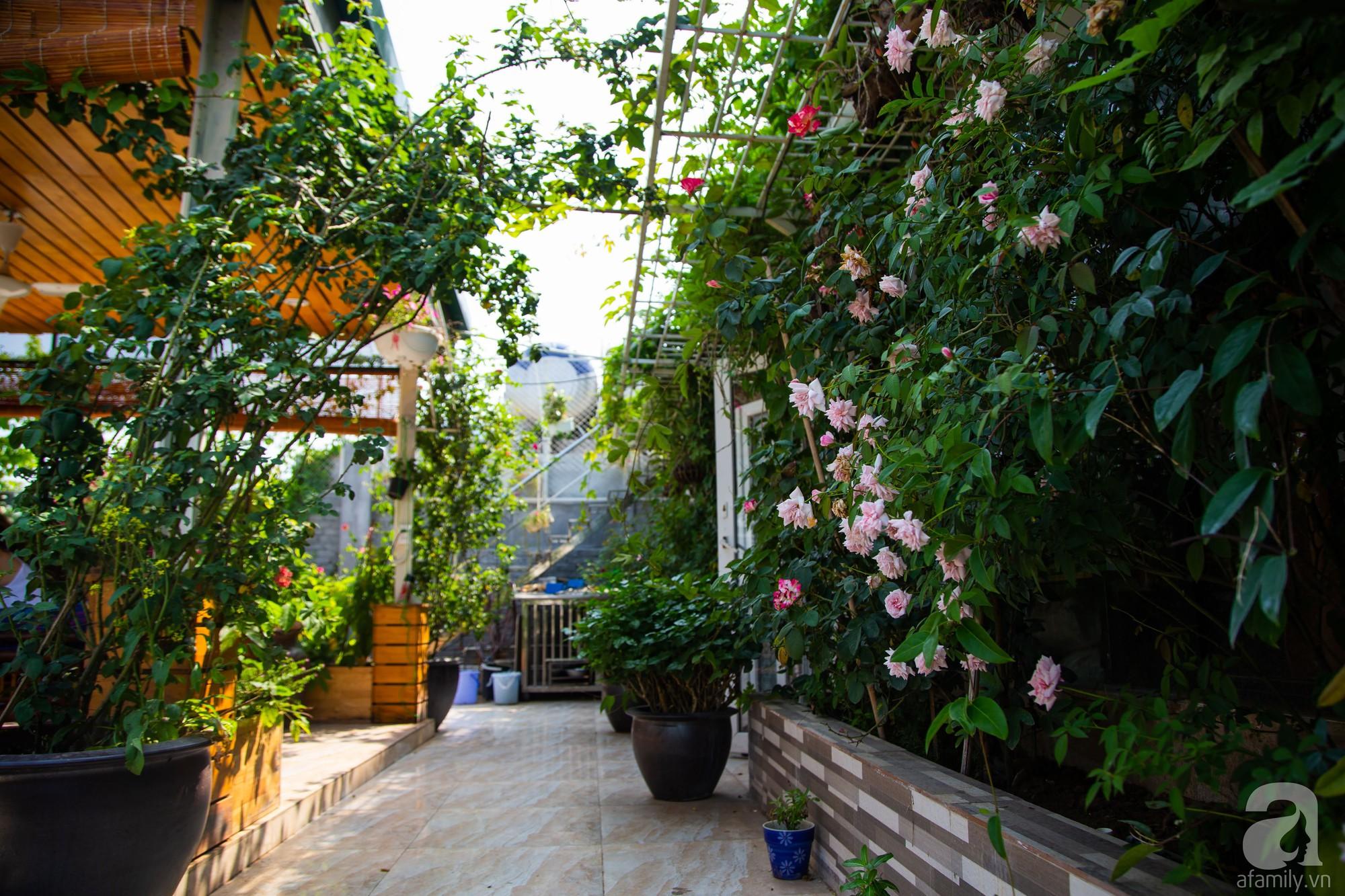 Khu vườn trên sân thượng rộng 200m² đẹp ngỡ ngàng với trăm loài hoa đua nhau khoe sắc ở Hà Nội - 7