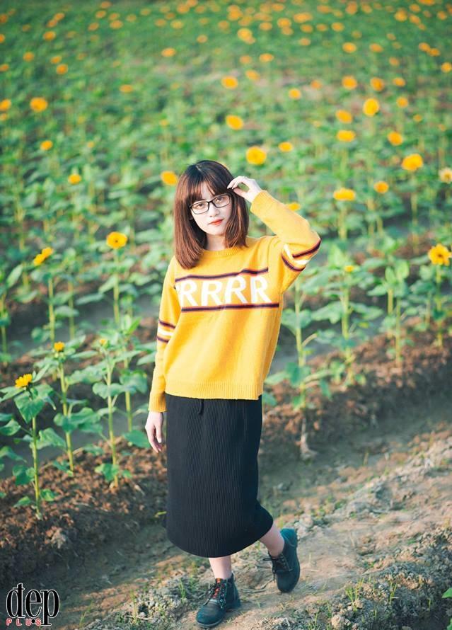 Chẳng cần về Nghệ An cũng được check-in cánh đồng hoa hướng dương rực rỡ ngay cạnh Hà Nội