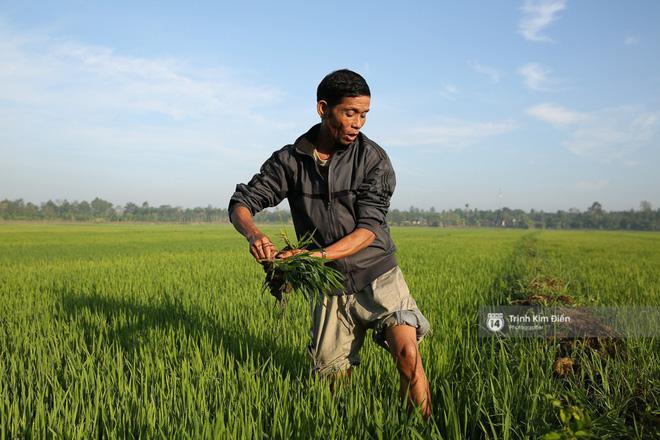 Cha của Hhen Niê vẫn lam lũ làm ruộng, bốc vác ngay sau ngày con gái đăng quang Hoa hậu Hoàn vũ