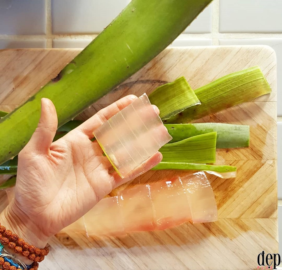 Công thức pha nước nha đam đường phèn lá dứa giúp thanh nhiệt ngày Tết