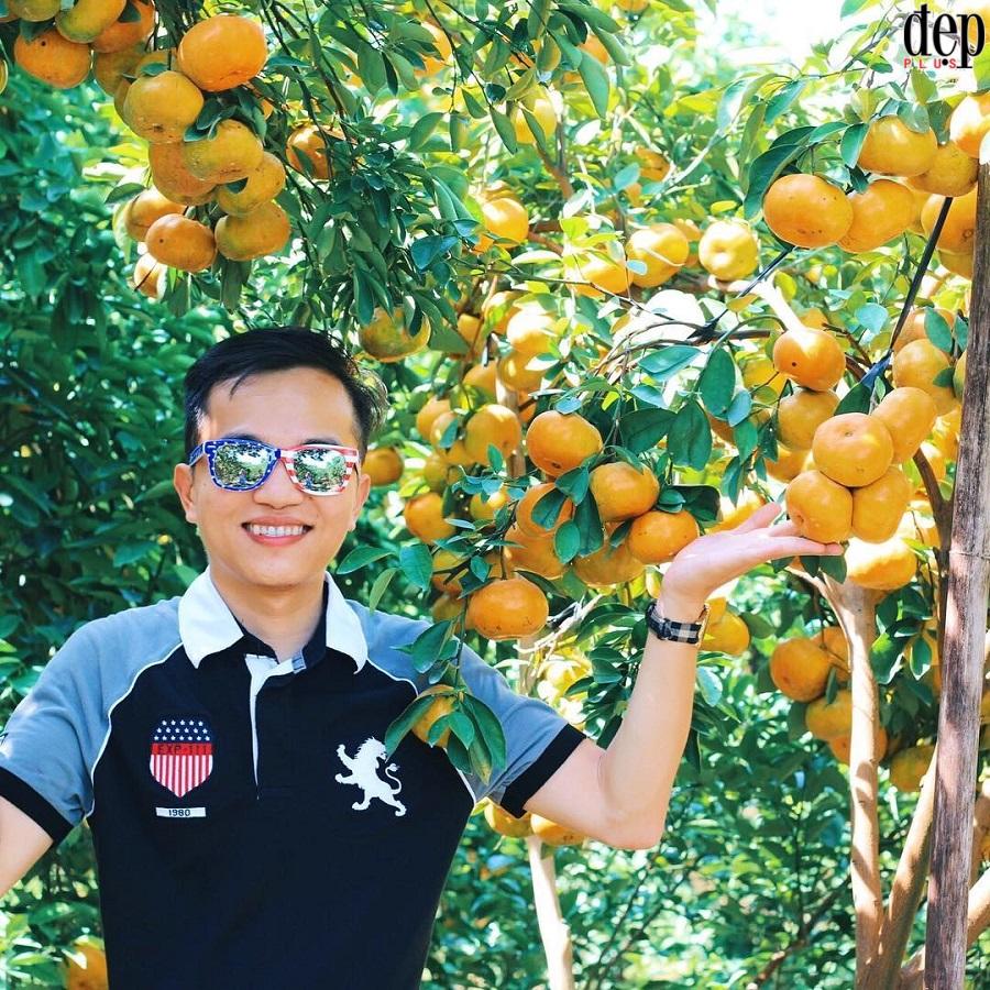 Gần Tết ghé thăm Vương quốc quýt hồng Lai Vung trứ danh ở miền Tây