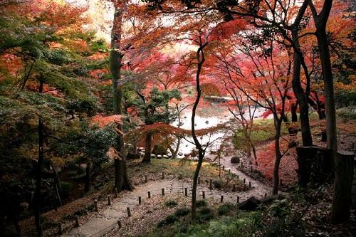 Lạc lối tại xứ ảo mộng trong những khu vườn đẹp như cổ tích này