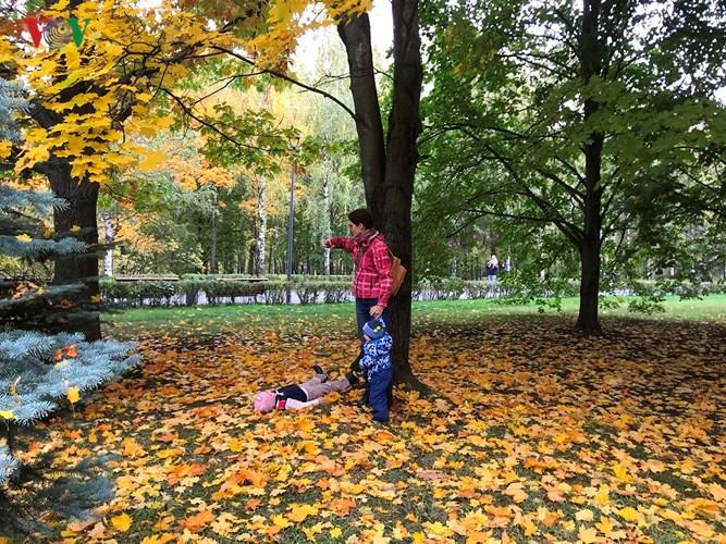 Cảnh sắc Moscow vào thu chuyển vàng như được rót mật