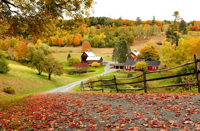 Những trải nghiệm mùa thu ở trời Tây