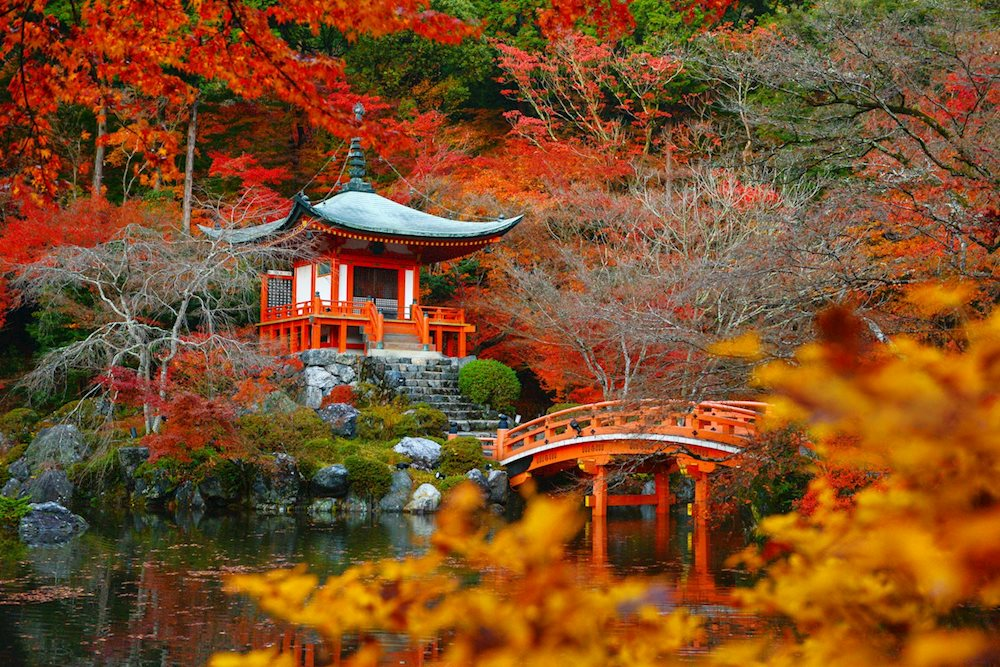 Lặng người trước vẻ đẹp tuyệt sắc của mùa thu trên khắp thế giới