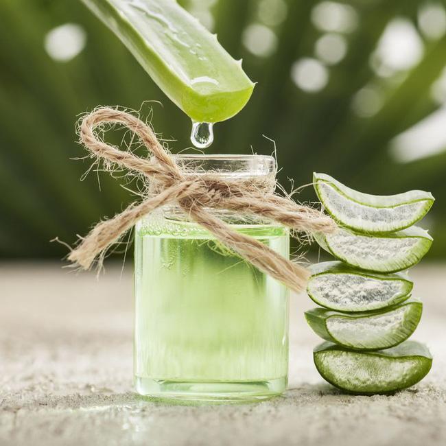 Uống nước nha đam có thể giảm cân hay không? Câu trả lời sẽ khiến bạn vô cùng bất ngờ