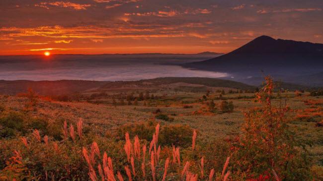 Mướt mắt trước những vùng đất đẹp như ảo ảnh tại đất nước mặt trời mọc - 10