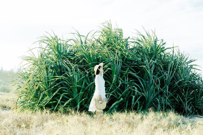 Nhờ bộ ảnh này mà chúng ta biết được một chốn chụp ảnh sống ảo cực mới ở Đà Nẵng - Hội An